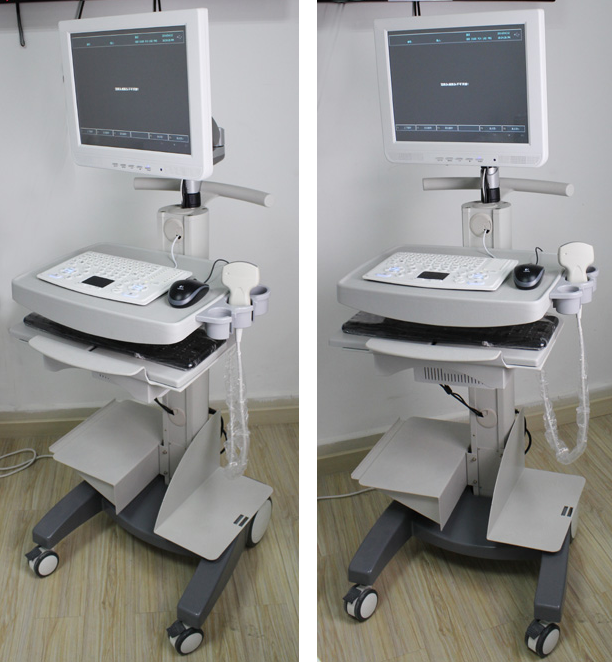 UT-B10 Touch Screen Trolley Ultrasound Diagnosis B Scanner(ultrasound ultrasonic black white scanner)